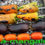 Печеные овощи на шампурах