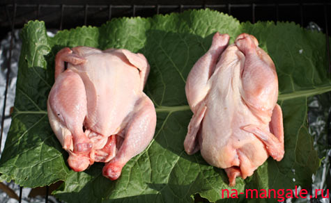 Закладываем цыплят в коптильню