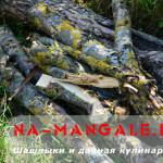 дрова для шашлыка