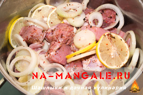 shashlyk-iz-svinini-v-mineralke-06
