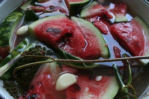 kvashenyj-arbuz