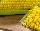 Способы длительного хранения кукурузы