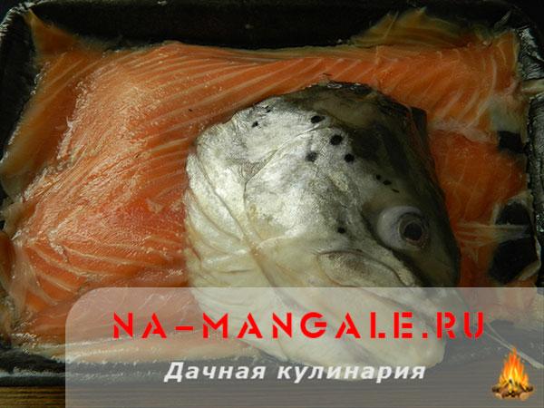 Как засолить обрезь лосось в домашних условиях 12