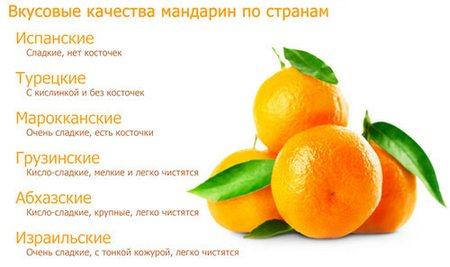 chem-otlichayutsya-mandariny