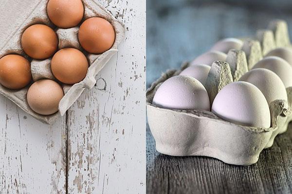 Отличие яиц