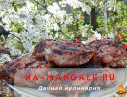Как замариновать и пожарить куриные бедрышки на мангале