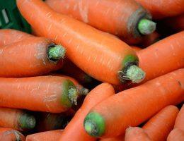 Способы хранения моркови в домашних и квартирных условиях
