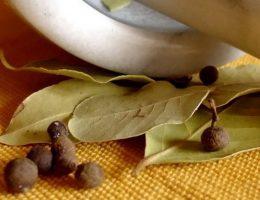 lavrovyj-list-v-kulinarii-poleznye-sovety-i-rekomendacii