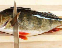 Простые советы о том, как чистить окуня от чешуи: рекомендации рыбаков и домохозяек 821