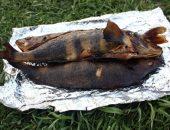 Миниатюра к статье Горячее копчение рыбы