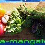 Болгарские перцы и зелень