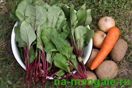 Ингредиенты для свекольного супа