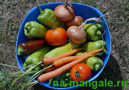 Овощи для приготовления фаршированного перца