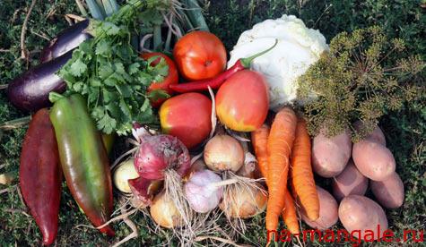 Овощи для димлямы