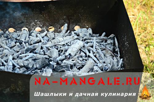 shashlyk-iz-indeyki-2