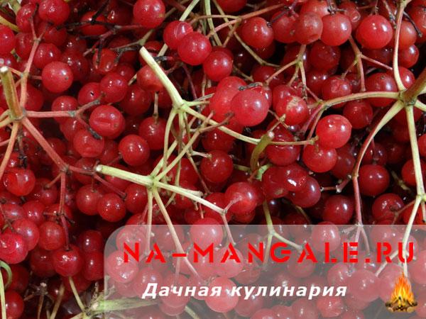 kalina-med-01