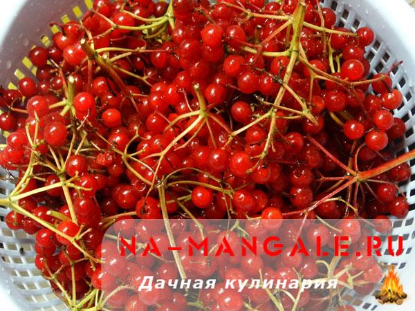 kalina-med-02