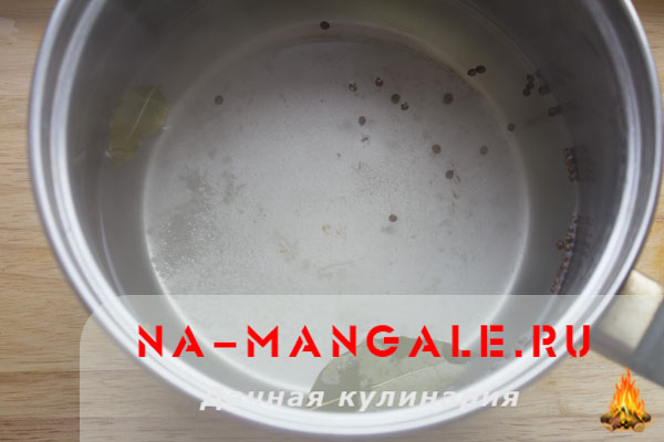 moyva-solenaja-2