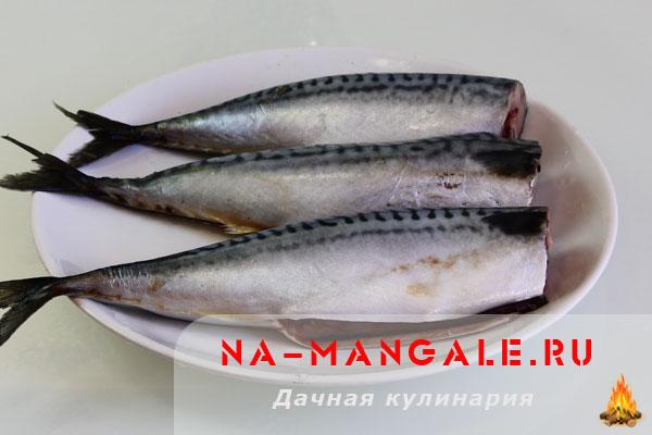 skumbrija-2