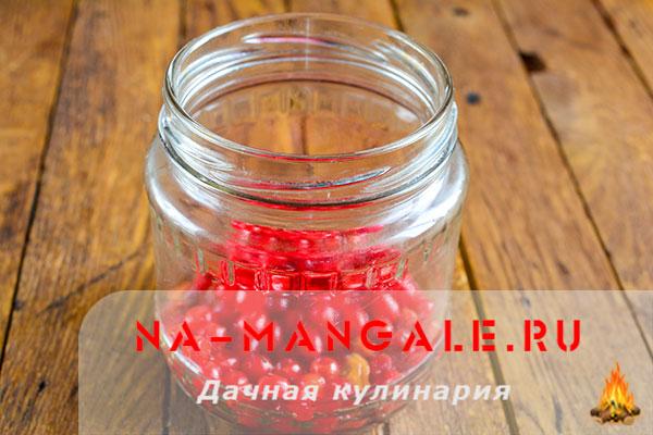 kompot-kalina-3