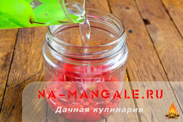 kompot-kalina-4