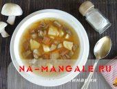 Миниатюра к статье Вкусный суп с грибами и мясом
