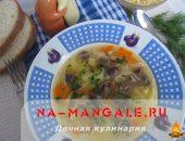 Миниатюра к статье Простые и вкусные рецепты супа из куриных сердечек