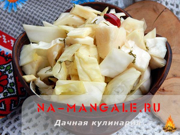 Маринованная капуста кусочками на зиму: вкусные рецепты быстрого приготовления