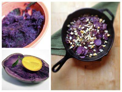 Фиолетовая или синяя картошка полезные свойства сорта польза и вред