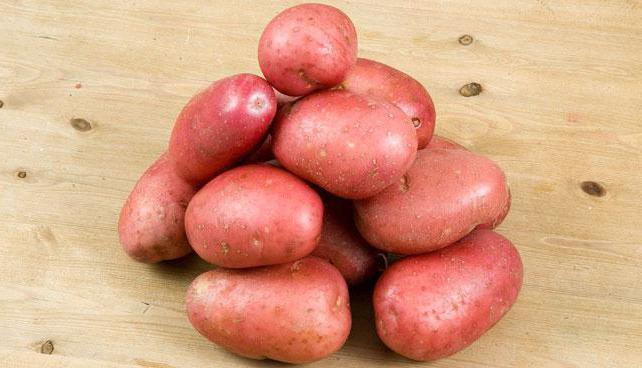 Картофель сорта Журавинка – характеристики и описание   Видео