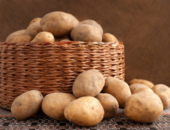 Правильные контейнеры для картофеля