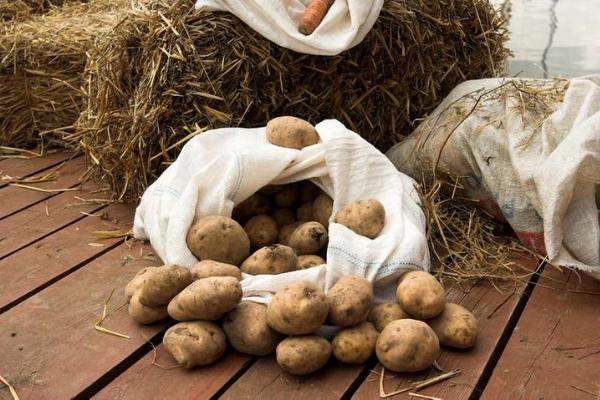 Как продлить срок хранения овощей зимой