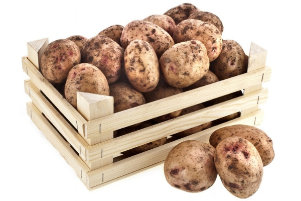 Как сохранить картофель зимой без погреба