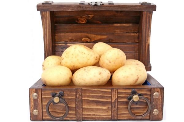 Как сделать ящик для картошки для хранения на балконе и в другом месте?