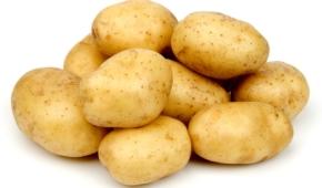 Миниатюра к статье Разрешено ли давать картошку собакам? Можно ли кормить овощем коров, кошек, коз, кур и хомяков?