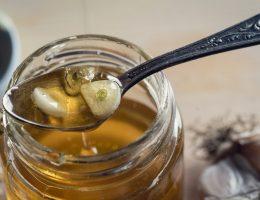 Польза чеснока с медом