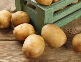 Как правильно хранить картофель не в погребе