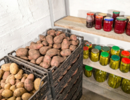 Хранение картофеля в гараже