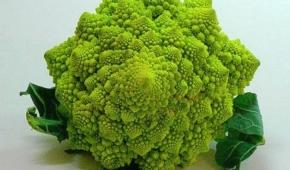 Миниатюра к статье Что такое капуста Романеско и как выглядит этот сорт? Как выращивать?