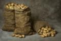 Как правильно хранить картофель в погребе
